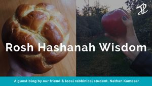 """A picture of a round challah and a hand holding an apple in an orchard with the words """"Rosh Hashanah Wisdom"""" overlaid"""