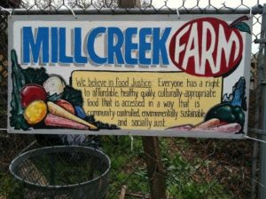 """A large sign planted among some greenery that reads """"Mill Creek Farm"""""""