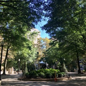 A sunny day in the spring with big green trees and lots of shade in RIttenhouse Square
