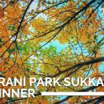Cianfrani Park Sukkah BYO Dinner